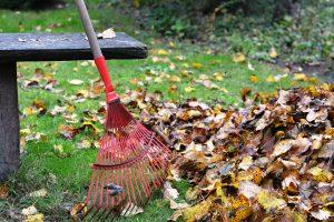 Landscape Maintenance Morris County