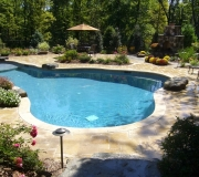 Pool-outdoor-water-backyard-landscaping-landscape-spa