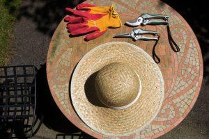Design Garden Gardening
